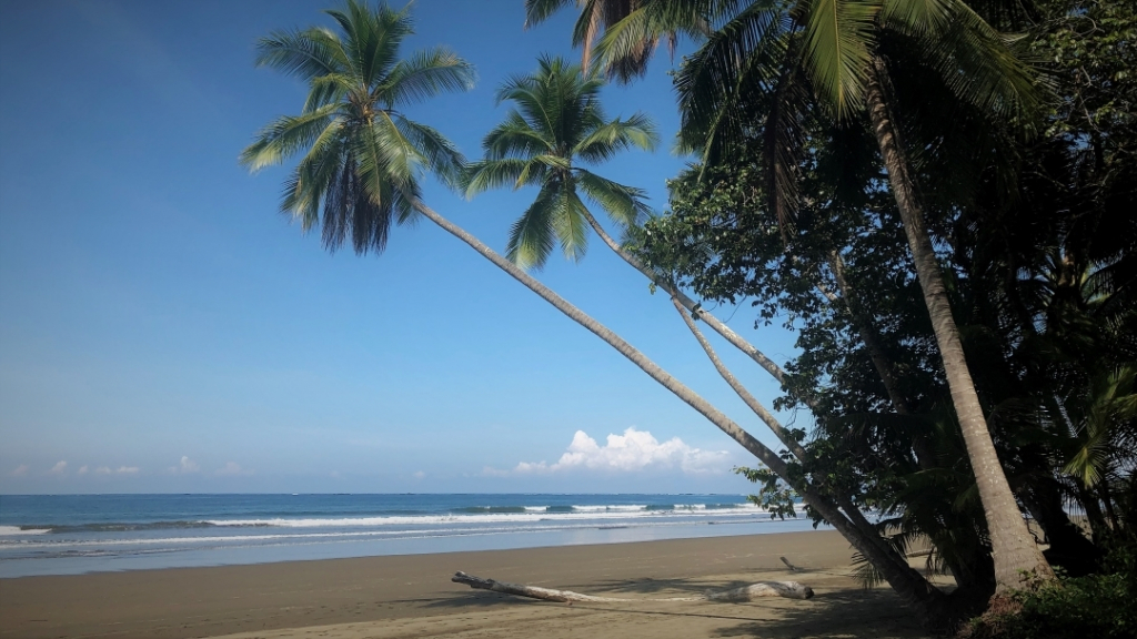 costa rica dominical beach