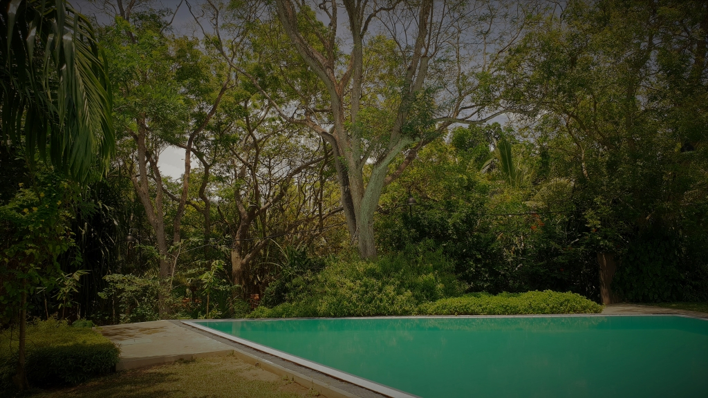 Sri Lanka Tangalle Palm Paradise Cabanas Villas pool